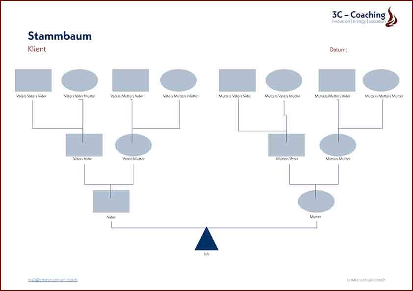 3C-Stammbaum